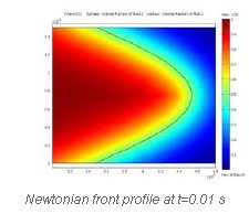 Newtonian front profile at t=0.01 s